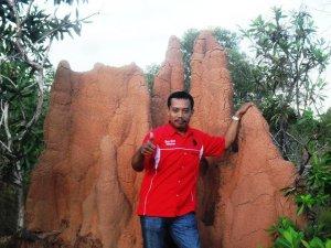 MUSAMUS di TN Wasur-Merauke